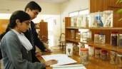 Boys & Girls Higher Secondary Schools